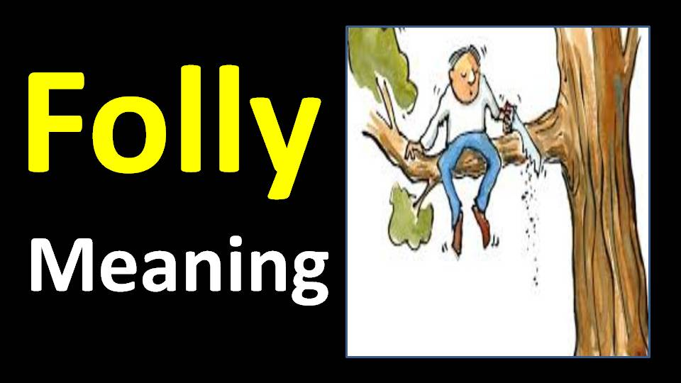 folly meaning in hindi