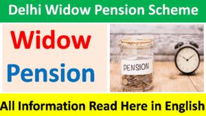 delhi widow pension scheme online apply